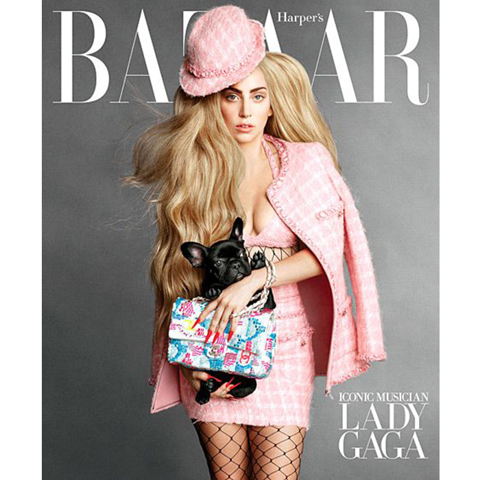 "Purse pup! Lady Gaga's new puppy Asia was her co-star on the cover of <em>Harper's Bazaar</em> in 2014, posing behind the ""Poker Face"" singer's Chanel bag. This was one of nineteen iconic covers created to feature style icons ranging from Gaga to Cindy Crawford and Penelope Cruz. In the feature, Karl Lagerfeld bonded with his Chanel cover girl over their pets. ""Since my Choupette is the most famous cat on the Internet, and Asia is the most famous dog on the Internet, should they meet?"" he said. ""Does Asia have a personal maid like Choupette does?"""