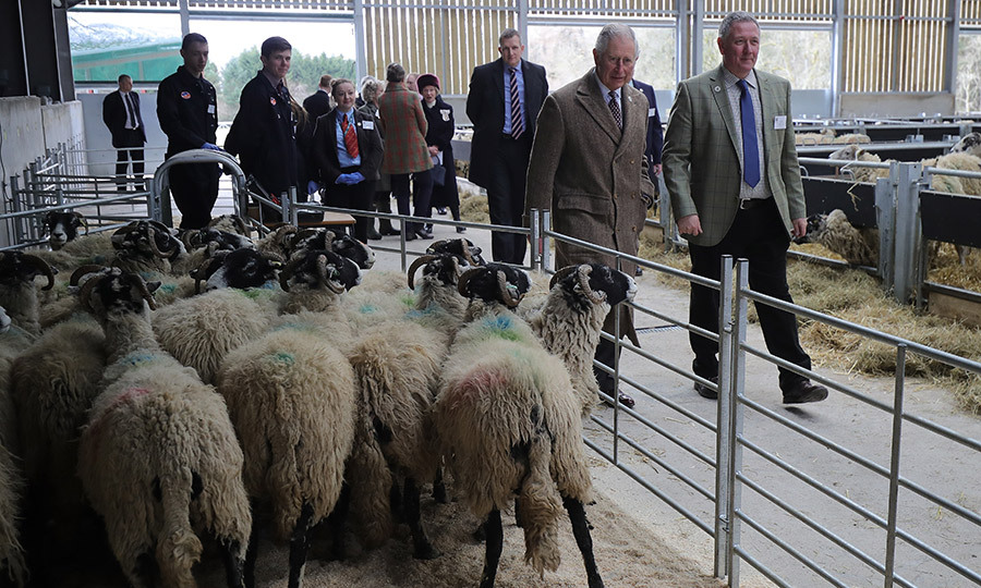 <p>A day on the farm! Prince Charles met with Matt Bagley, head of the farm, during his visit to the National Centre for the Uplands at Newton Rigg College on March 26. The college is a a state-of-the-art sheep husbandry centre at Low Backside Farm.</p>