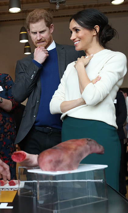 <p>As fiancée Meghan Markle chatted, Prince Harry hilariously reacted to a display of prosthetic props made by the Titanic FX company during a visit to Catalyst Inc science park in Belfast, Northern Ireland.</p> 