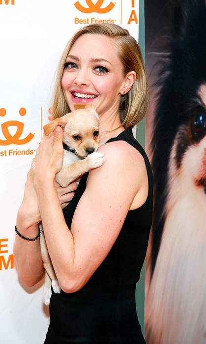<p>Puppy love! Actress Amanda Seyfried attended the Best Friends Animal Society Gala at in New York on April 10.</p>