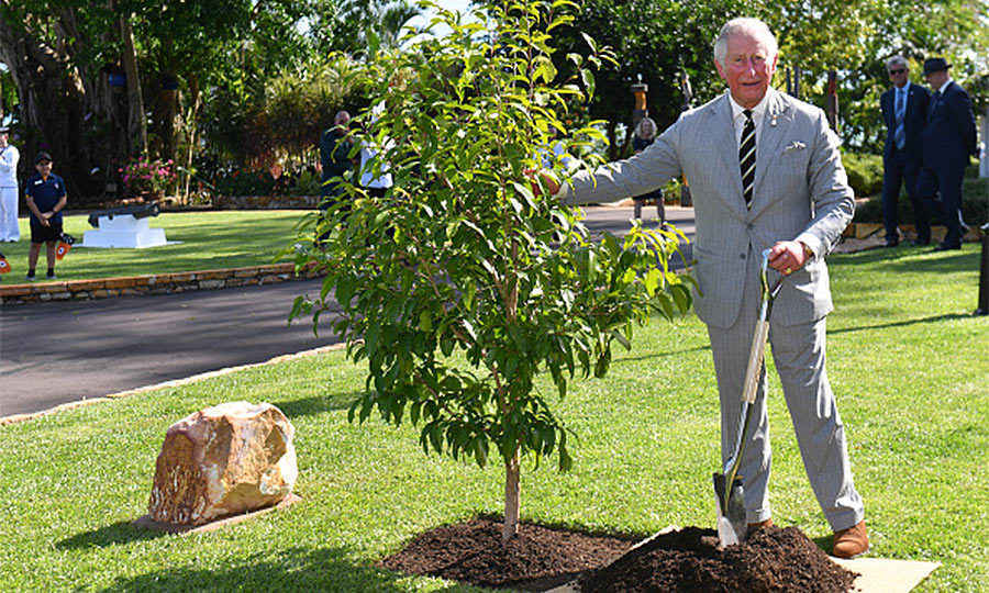 Upon his departure, Charles planted a native Syzigium nervosum tree at a ceremony during a reception at Government House.