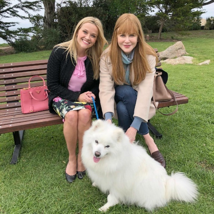 <p><em>Big Little Lies</em> just got a whole lot fluffier! Reese Witherspoon took to Instagram to introduce the hit drama's newest cast member: an adorable pup named Jolly! The actress and her producing partner/ co-star Nicole Kidman posed on set with the cute pup, revealing that he has the greatest hair in Monterey.</p>