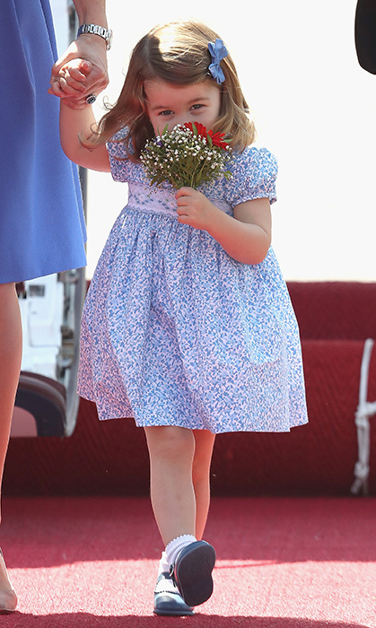 <h2>Charlotte Takes a Sniff, July 19, 2017</h2>