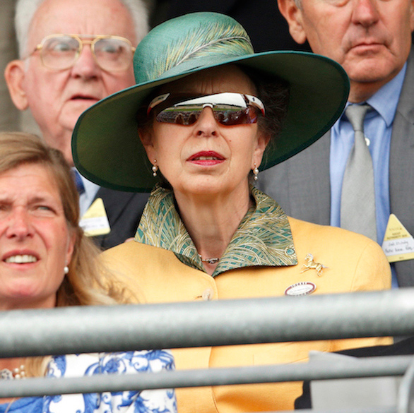 <h2>Princess Anne's statement sunnies</h2>