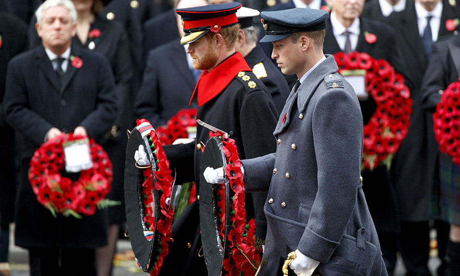 <p>Both Harry and William served time in the British military, and pay their respects to fallen soldiers during Remembrance Day every year.</p>