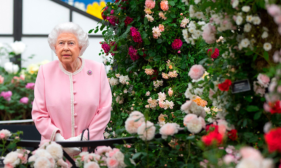 <p>How beautiful did Queen Elizabeth II look at the Chelsea Flower Show? The royal stunned in bubblegum pink while admiring the blooms on May 22.</p>