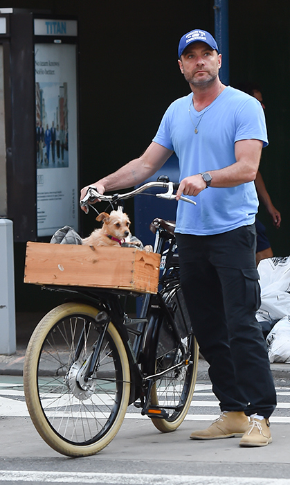 <p>Liev Schreiber took his dog for a bicycle ride in New York on May 29.
