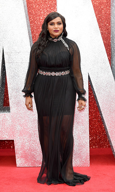 Old Hollywood glamour at its finest! Mindy Kaling shined in a silver-embellished Alberta Ferretti gown that featured sheer sleeves and a semi-sheer skirt. The actress wore her shiny brown locks in sleek waves.