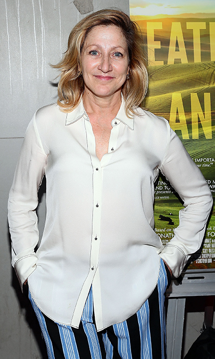 Edie Falco, <em>The Land of Steady Habits</em>