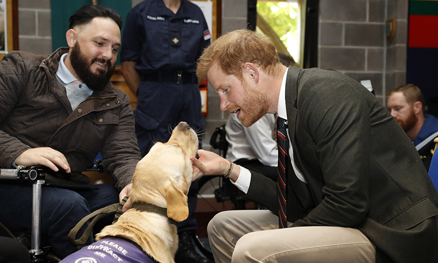 Puppies and kids and mini cars, oh my! Prince Harry paid his first visit to Devon as Captain General Royal Marines on Thursday (Sept. 13) and it was definitely a day to remember. The Duke arrived at the centre in a Royal Navy Wildcat Maritime Attack Helicopter and met with new recruits undergoing training, as well as the Invictus Games Racing Team.