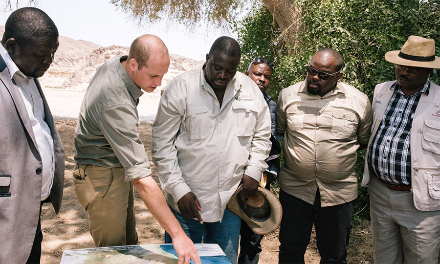 William inspected a map that would help the group locate an endangered rhino.