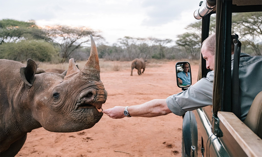 William hand-fed a beautiful rhino at the Mkomazi Rhino Sanctuary.
