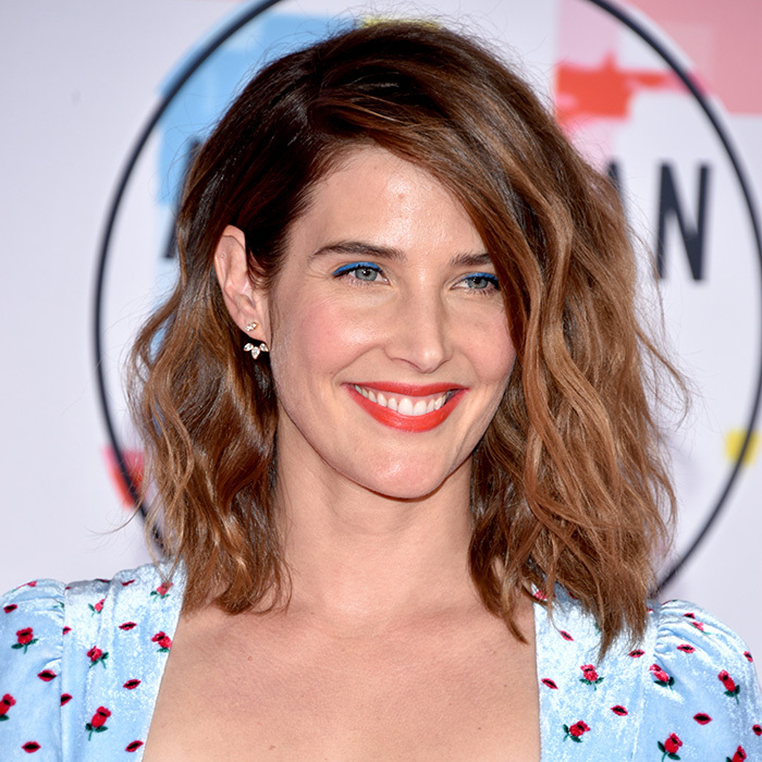 <strong>Cobie Smulders: </strong>