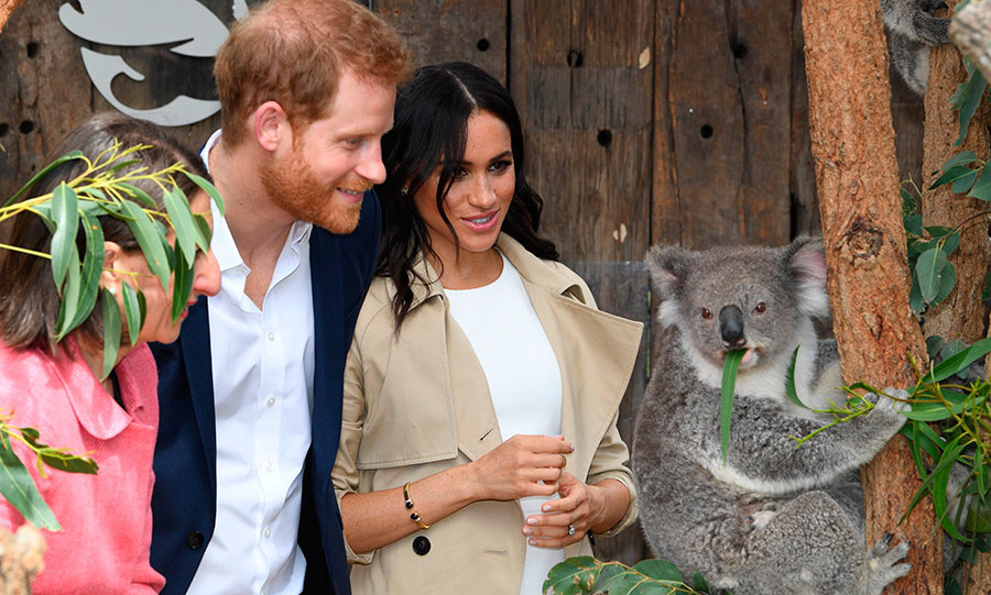 Prince Harry and Meghan met a sweet koala at Taronga Zoo as they kicked off their royal tour of Australia, New Zealand, Fiji and the Kingdom of Tonga. The loved-up couple had announced their first pregnancy less than a day before.