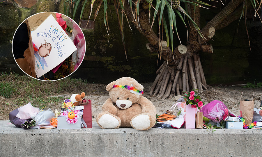 Just some of Baby Sussex's Bondi Beach haul! From a large plush bear with a multicoloured headband to a bunch of carrots (beside the bear), a brightly coloured caterpillar toy and the kids book <em>Emily Makes a Splash</em>, by Janah Upton. 