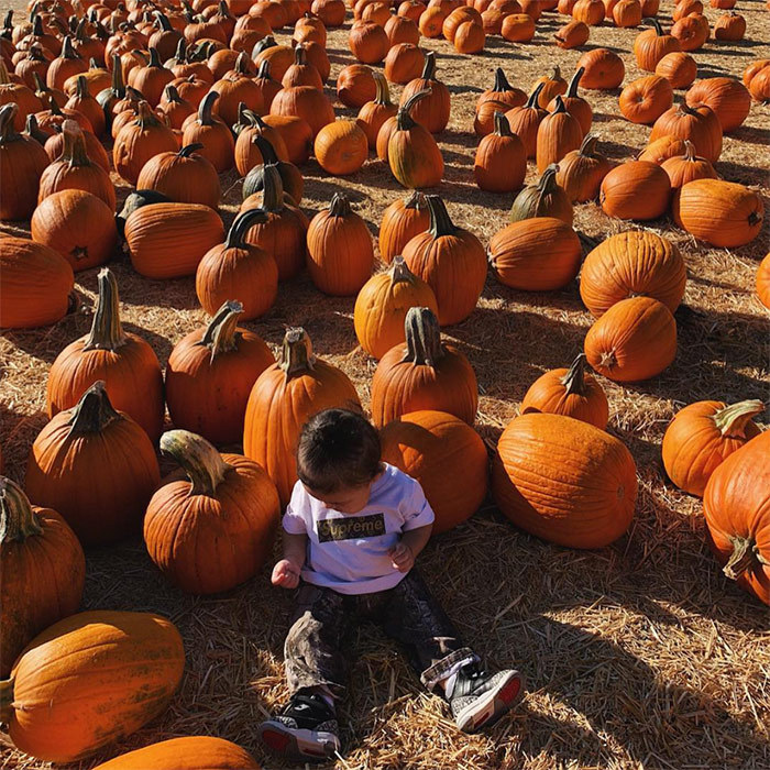 Kylie Jenner's cutie Stormi, 8-months-old, looked adorable at her first pumpkin patch in camouflage pants, a Supreme T-shirt and sneakers.