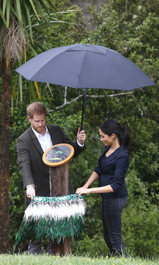 "Prince Harry and Meghan unveiled the Queen's Commonwealth Canopy plaque by lowering a green and white feathered skirt as the prince held an umbrella to keep the couple dry. ""The sooner we fully appreciate our surroundings and how interconnected we all are the better,"" he said in a speech. ""Not just for our planet, but for the balance of all its inhabitants.""