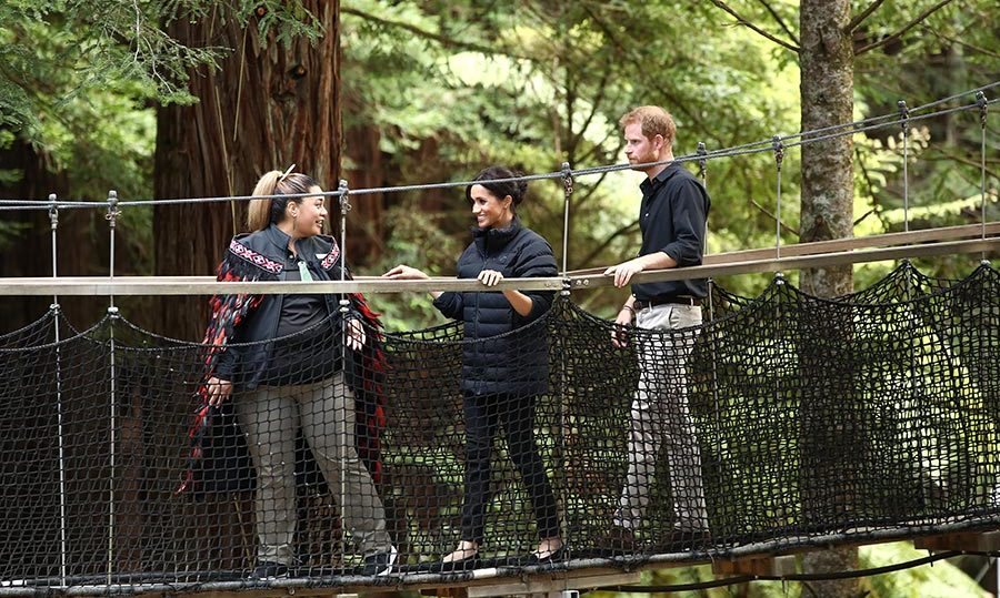 The unique Redwoods Tree Walk is a 700m-long walkway of suspension bridges running between majestic 117-year-old Redwood trees! 