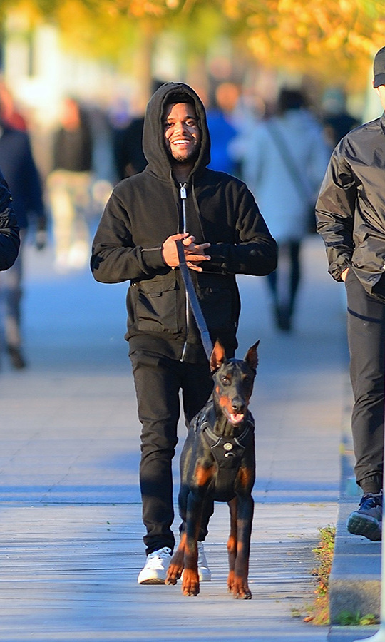 The Weeknd stayed warm in a hoodie as he walked a doberman in New York with friends on Nov. 3.