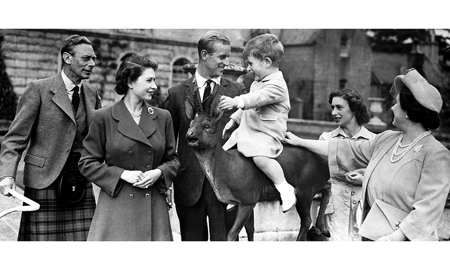 <h2>THE CROWD-PLEASER</h2>