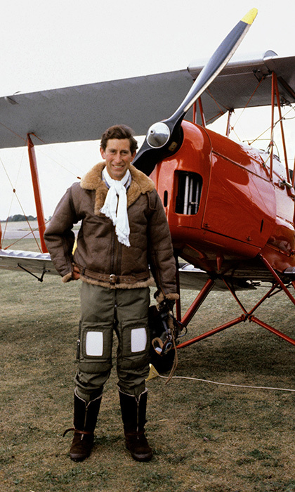 <h2>THE DAREDEVIL BACHELOR</h2>