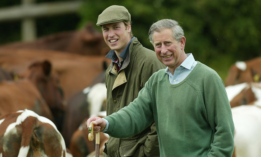 <h2>LAY OF THE LAND</h2>