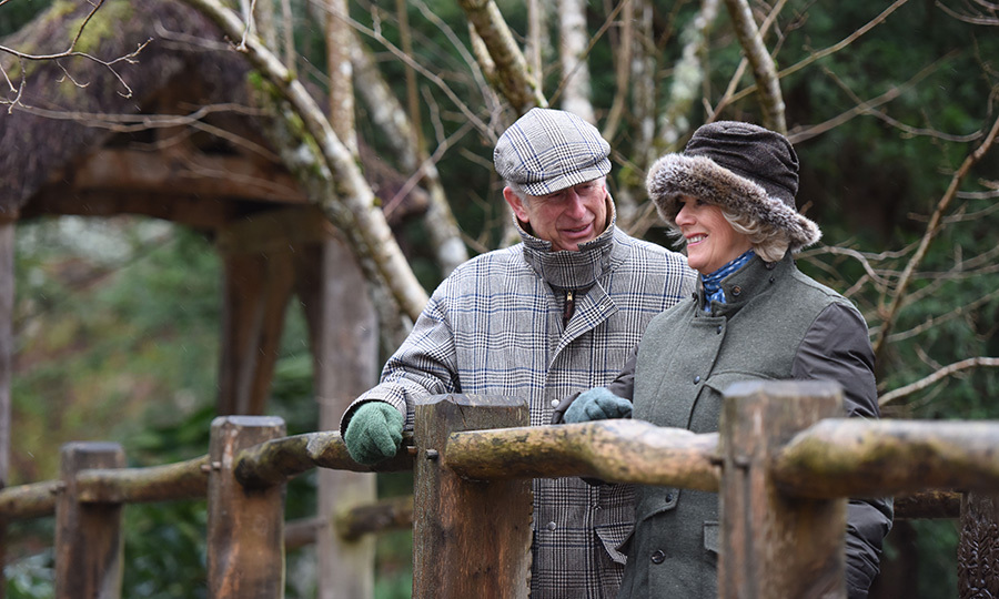 <h2>TEN BLISSFUL YEARS</h2>