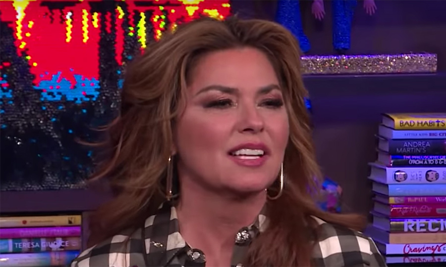 Shania Twain once peed her pants on stage and had the most genius trick to hide it