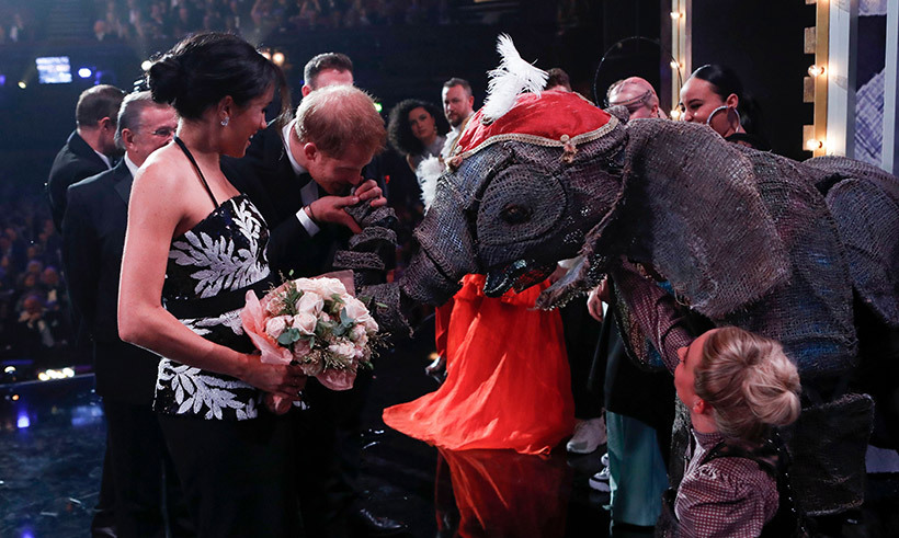 Duchess Meghan has the cutest reaction to Prince Harry kissing an elephant at the Royal Variety Performance