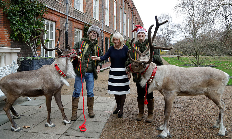 Things got festive at Clarence House on Dec. 6! The Duchess of Cornwall, dressed beautifully in a chic black-and-white skirt with a dark sweater and tights, posed with some adorable reindeer to ring in the holiday season.