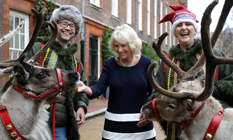 "The Duchess of Cornwall dished up sausage and mash as she treated children – helped by two of her charities – to an encounter with two of Santa's reindeer at a magical Christmas lunch at Clarence House on Dec. 6. <p>The excited youngsters, who are supported by Helen and Douglas House Children's Hospice and the Roald Dahl's Marvellous Children's Charity, took turns to feed ""Dancer and Blitzen"" handfuls of lichen in the garden after enjoying a festive feast in the dining room inside.