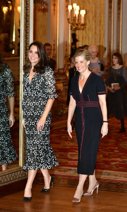 The Duchess of Cambridge and fellow stylish royal Sophie, Countess of Wessex joined forces on Feb. 19 to host a new fashion initiative called the Commonwealth Fashion Exchange. Looking fresh and poised, pregnant Kate donned a patterned dress by Canadian-born designer Erdem and elegant high heel shoes, accessorizing with a simple clutch bag and earrings by Anita Dongre. 