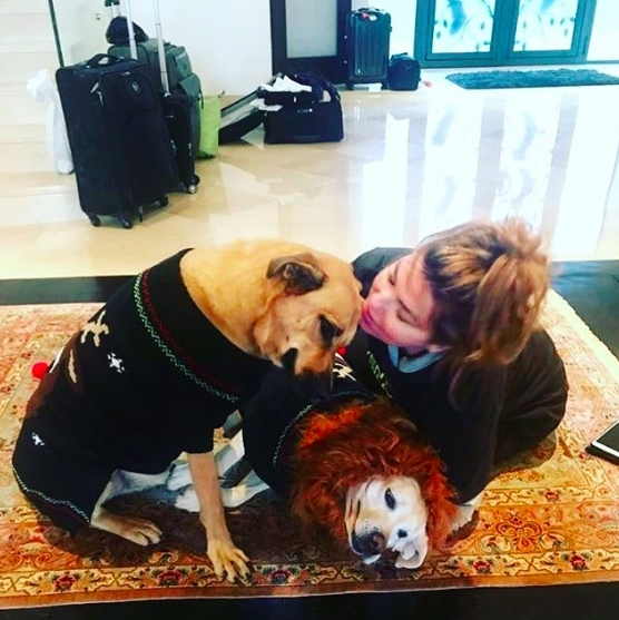 "Shania Twain already has her Christmas wish... Her pups! She captioned the adorable snap: ""Just in the door in Switzerland after 36 hours of travel from New Zealand. Merry Christmas everyone with love from me and my family"".