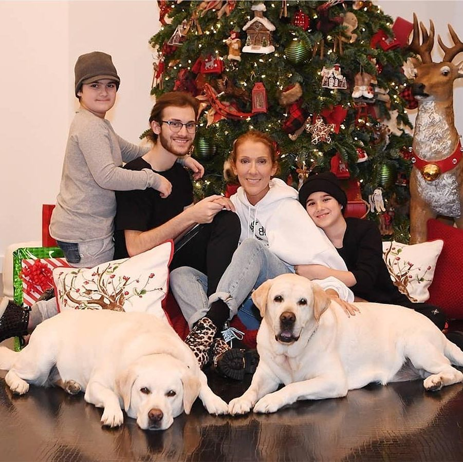 "Good tidings from Celine Dion and her cozy Christmas crew! ""May your heart and home be filled with warmth, peace and love. Happy Holidays everyone! ✨ – Céline, RC, Nelson, Eddy, Charlie and Bear xxx…""