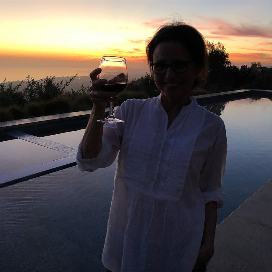 <h2>Julia Louis Dreyfus</h2>