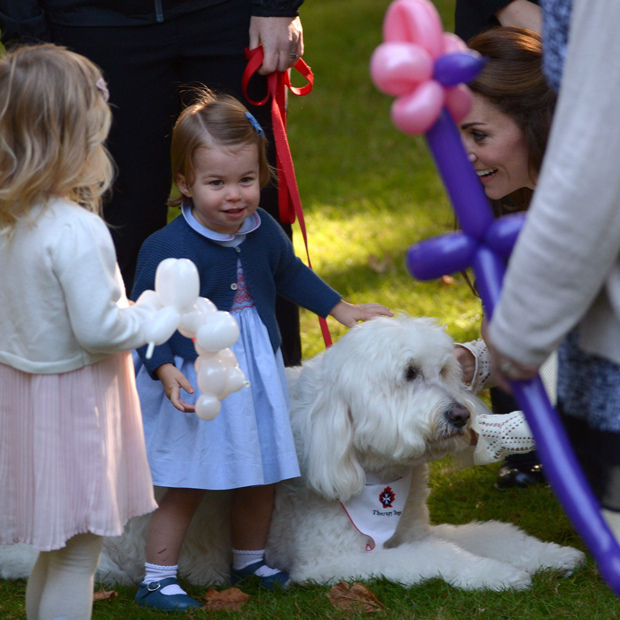 At a children's party in Victoria, Princess Charlotte had a chance meeting with a beautiful pup! Kate looked on as her daughter made a furry new friend.