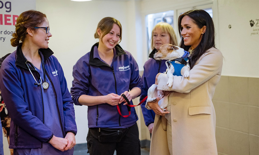 "And they call it puppy love! For the <a href=""https://ca.hellomagazine.com/tags/0/meghan-markle""><strong>Duchess of Sussex</strong></a>'s third official outing of the year, she paid a particularly adorable visit to one of her patronages, Mayhew. Wearing her heart on her sleeve, she showed her dedication to animal welfare while visiting some of the cute pups and chatting with staff, volunteers and beneficiaries about just how much Mayhew gives back to the community's dogs, cats and people.