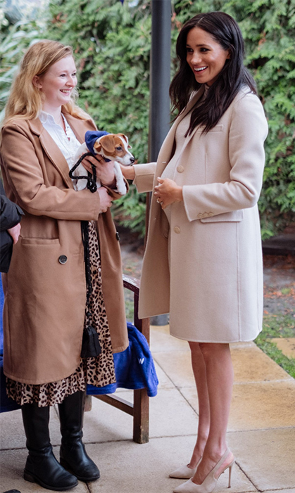 Meghan was positively glowing while meeting Mayhew ex-resident Maggie (previously known as Truffle) and her new owner Emma. The Jack Russell puppy was rescued from a suspected puppy farm in October last year.