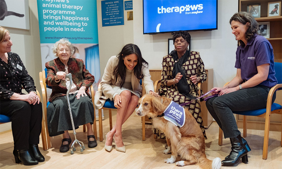 The duchess just couldn't help but sneak a pet of this adorable pup, Roobarb, while meeting TheraPaws volunteer Claire Godwin. The animal therapy program works to improve wellbeing in their local community, including retirement homes.