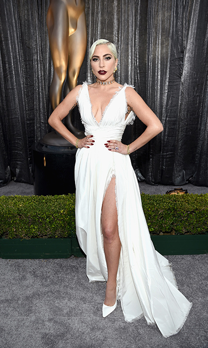 Lady Gaga in Dior