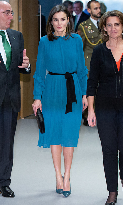 MADRID, SPAIN - JANUARY 31: Queen Letizia of Spain attends the Ibedrola Foundation Scholarships on January 31, 2019 in Madrid, Spain. (Photo by Paolo Blocco/WireImage)