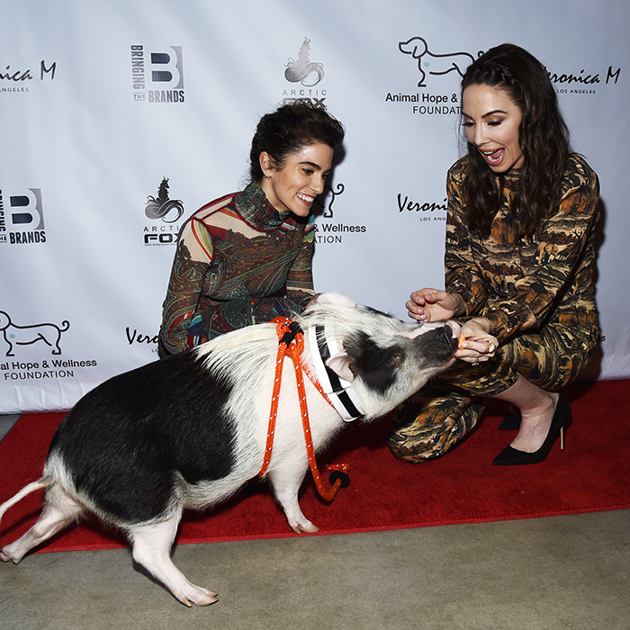 <em>Twilight</em> actress Nikki Reed, Pickles the Pig and comedian Whitney Cummings attended The Animal Hope & Wellness Foundation's 2nd Annual Compassion Gala on March 3. Too cute!