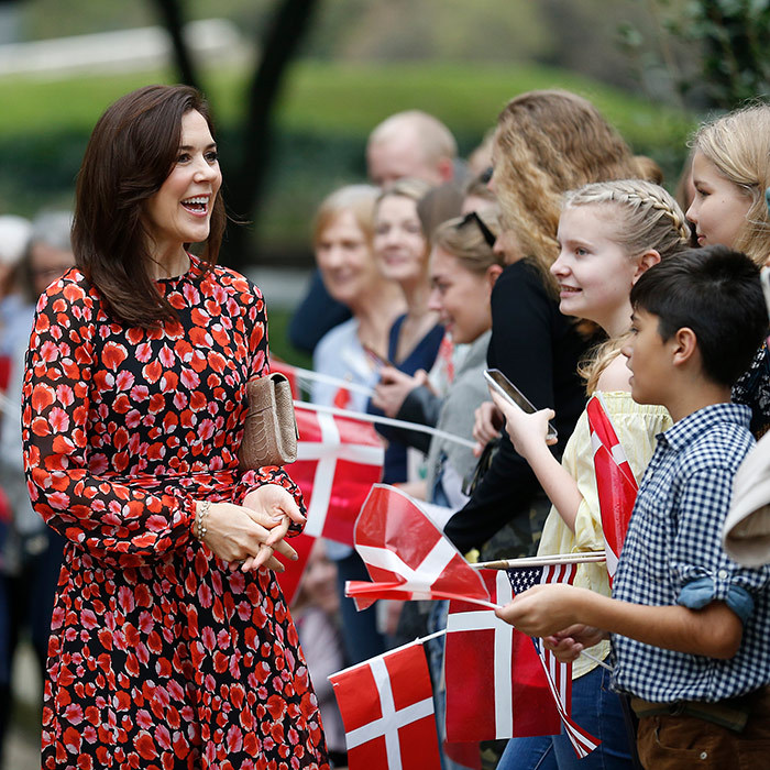 Earlier than day, the princess wowed in a beautiful dress as she greeted supporters at Houston City Hall. She was there to meet with Mayor Sylvester Turner.