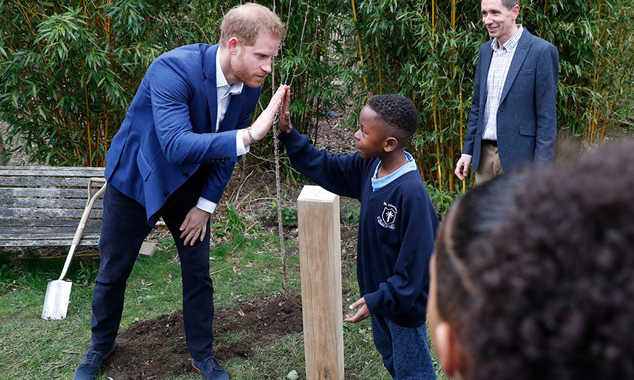When it was all done, it was time to celebrate! Here's Harry high-fiving his new friend Asher Charles-Bowen after the tree was in the ground. 
