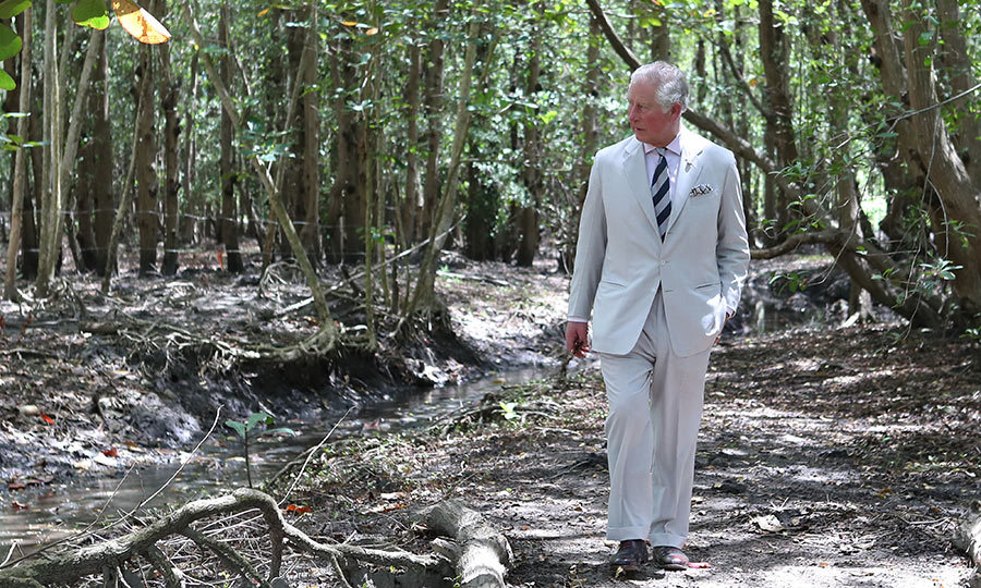 The Prince of Wales then visited Prospect Brighton Mangrove Park to learn about conservation on the islands. Charles is an environmentalist who has received numerous awards from environmental organizations for his work on issues such as climate change, organic farming and taking care of the Earth. 