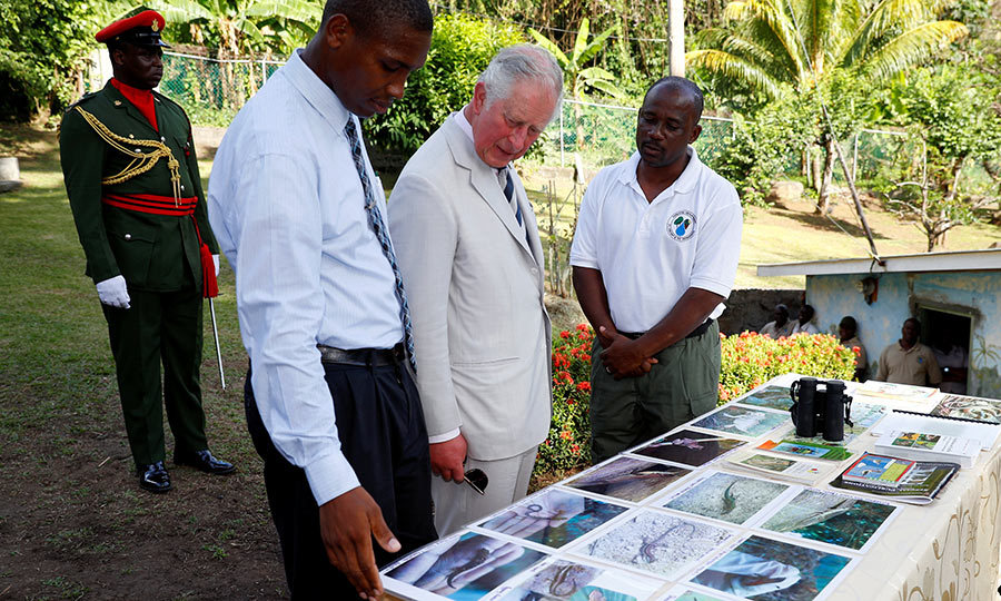 The prince also visited Kingstown's botanic gardens. 