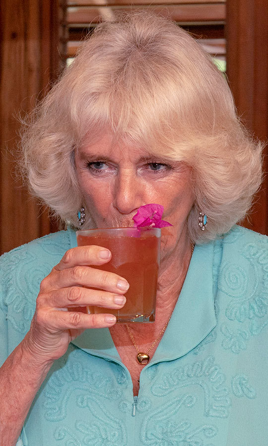 While there, Camilla got sipped on some rum punch, which we're betting tasted delicious! Chin chin!