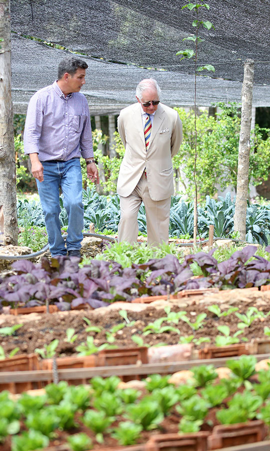 The prince also toured some crops on the farm, which is known for its organic produce.
