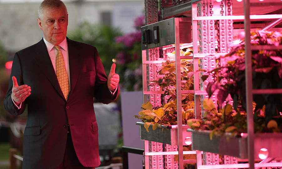 Prince Andrew also toured the IKEA exhibit and got a good look at some plants incubating.