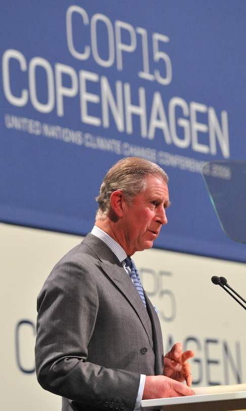 The prince spoke at the Copenhagen climate change conference back in 2009, asking the audience to consider what they could do to make the world more liveable. 